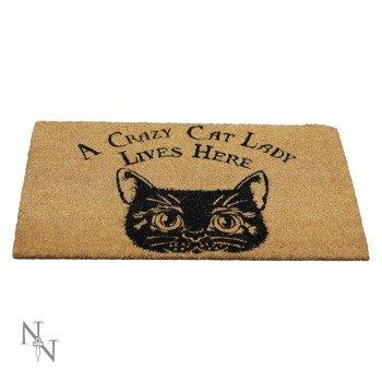 wycieraczka CRAZY CAT