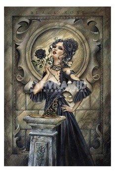 plakat ALCHEMY - BLACK ROSE