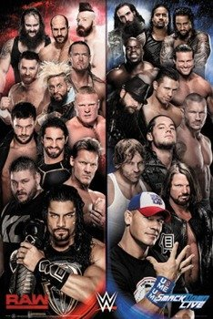 plakat WWE - RAW V SMACKDOWN