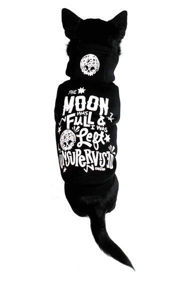 bluza dla psa KILLSTAR - FULL MOON