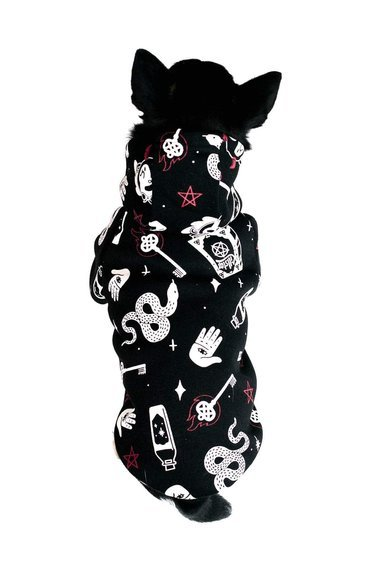 bluza dla psa KILLSTAR - I'M MAGIC