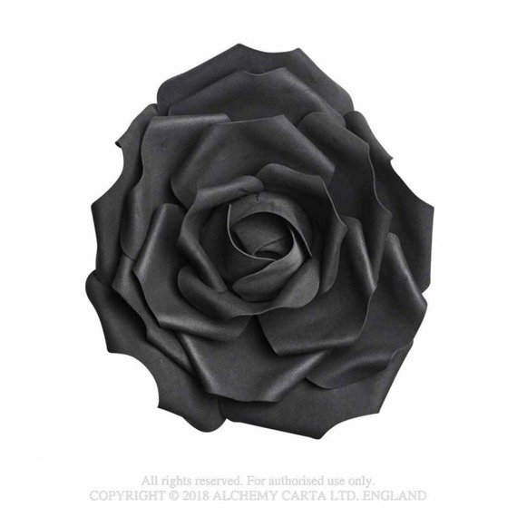 róża czarna SMALL BLACK ROSE